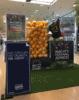 Shopping_Center_Schätzspiel